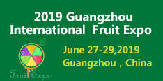 2019 Guangzhou International Fruit Expo